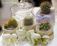 bomboniere comunione con piante grasse - Cerca con Google