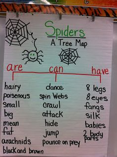 Mrs. Petite's Teaching Passion: Eeek ... Spiders!!