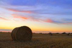 Late Summer Prairie Sunset