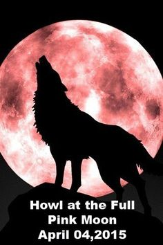 Full Pink Moon April 4, 2015 - Click Picture For Full Article