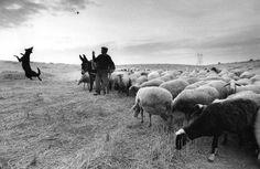 The afternoon roads, Zamora, Spain, 1988 - by Cristina Garcia Rodero (1949), Spanish