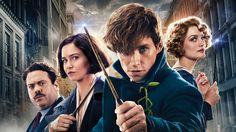 Fantastic Beasts Sequel Begins Filming, Plot Details Revealed
