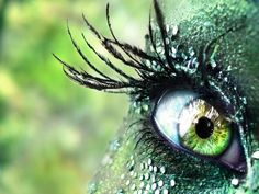 """O, beware, my lord, of jealousy;  It is the green-ey'd monster, which doth mock  The meat it feeds on. ""    William Shakespeare"