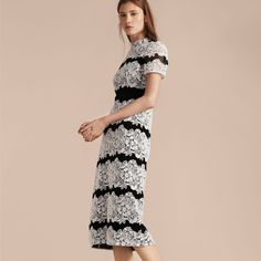 A fitted Burberry shift dress made from intricately woven cotton blend mesh with Italian-woven floral macramé lace panels.