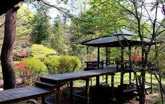 栃木県日光市は世界遺産の町。その世界遺産二社一寺にほど近い高台に、美しい庭園を持つ「松屋敷」があります。1万坪に及ぶ敷地には150本を超す赤松や美しい池、金谷ホテルゆかりの日本家屋や五角堂などが残されています。この庭園は私有地のため非公開でしたが、2016年から限定日に公開。萌える若葉・ツツジ・クリンソウ・紅葉など四季折々の風情豊かな「松屋敷」。ぜひ日光観光に加えてみてはいかがでしょう。