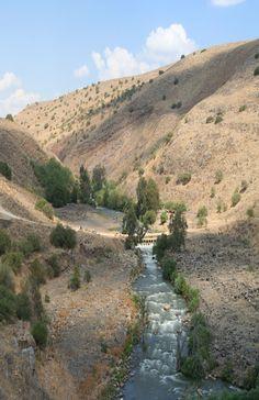 Flowing Of The Jordan River, Israel