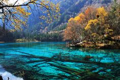 """Jiuzhaigou (Jiw-Jai-Gow) or Jiuzhai Valley is a national park and world heritage site in Sichuan Province of China.  It has been called """"Heaven on Earth"""""""