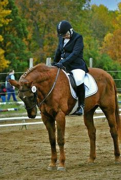 70yr old rider, 30yr old horse score 70% in training level dressage.