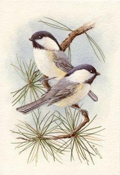 Chickadee Vignette by Maureen McCarthy
