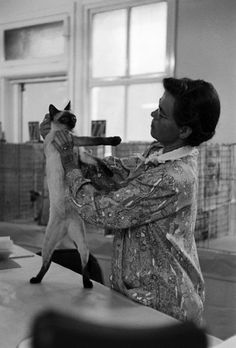 George Silk—Time & Life Pictures/Getty Images Cat show, Los Angeles, Calif., 1952 - Read more: LIFE Magazine Photos From a California Cat Show in 1952 | LIFE.com http://life.time.com/culture/photos-from-a-california-cat-show-in-1952/#ixzz39oVyKpVz