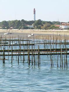 Vivre Feng Shui Bordeaux: Se ressourcer au Cap Ferret.
