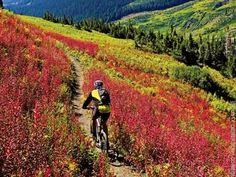Whether you prefer the Evolution Bike Park or mountain biking in the backcountry we have the trails for you!
