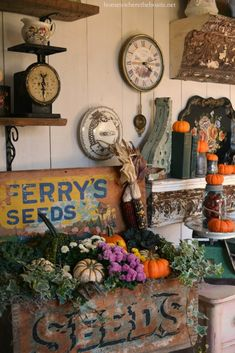 Fall in the Potting Shed and Ferry's Seeds Box | homeiswheretheboatis.net