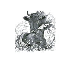 1 of 6 Cow with calf