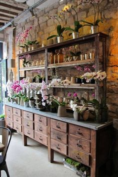 Merchandising - Boutique - fleuriste - Eric Chauvin Flower Shop, Paris, France (Lovely concept for inside a greenhouse, shelves, counter and drawers) Paris Shopping, Garden Shop, Display Design, Display Wall, Orchids, Sweet Home, House Design, Inspiration, Home Decor