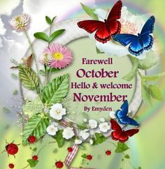 October  /  November