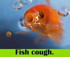 Fish Cough.