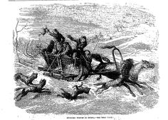 HUNTING WOLVES IN RUSSIA . The Penny Illustrated Paper (London, England), Saturday, March 15