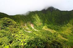 Hike up Mount Liamuiga, St. Places To Travel, Places To See, Windward Islands, Online Tickets, St Kitts And Nevis, Trip Advisor, Cruise, Things To Do, Tours