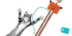 Your cat will go nuts for this weird door gadget | The Daily Dot