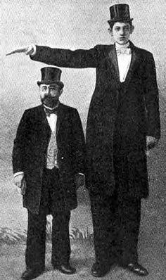 Julius Koch - 8 feet 0.9 inches