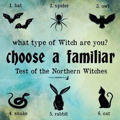 Wiccan, Witchcraft, Sabbats, Beautiful Soul, Outlets, Deities, Spirituality, Knowledge, Witch Craft