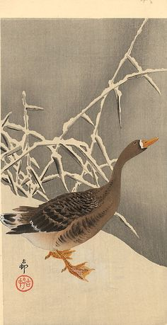 "¤ Goose on the snow - .Ohara Koson (小原 古邨?, Kanazawa 1877 – Tokyo 1945) was a Japanese painter and printmaker of the late 19th and early 20th centuries, part of the shin-hanga (""new prints"") movement."