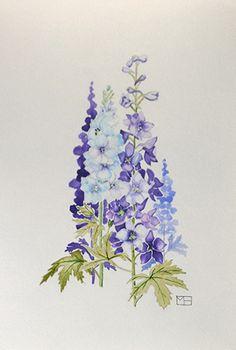 Delphinium | by Martha Heppard #MarthaHeppard #Watercolor #CedarStreetGalleries