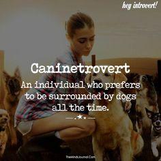 Caninetrovert - https://themindsjournal.com/caninetrovert/