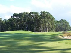 Play the 18 hole private golf course designed by famed golf course architect, Donald Ross! Guest play permitted on a limited basis. Brunswick Georgia, Georgia Country, Landscape Architecture, Golf Courses, Island, Club, Places, Green, Block Island