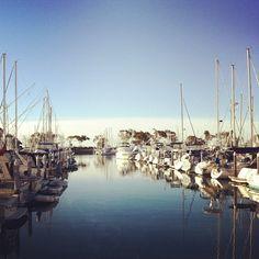 Sailboats, sailboats everywhere