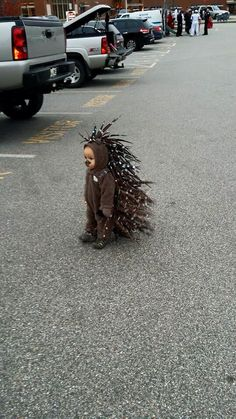Baby porcupine costume                                                                                                                                                      More