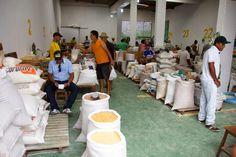 HORA DA VERDADE: ATUALIDADE: Comercialização de cereais e farinha a...