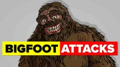 Why Did Bigfoot Attack An Innocent Family? Bigfoot Encounters, Bigfoot Sightings, Woods, Youtube, Woodland Forest, Forests, Youtubers, Youtube Movies, Wood
