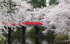 HD Japanese Springtime Wallpaper