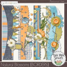 $3.00 Natural Blossoms BORDERS