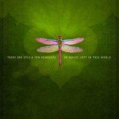 The Dragonfly speaks of greater dimensions of reality, and helps us to travel to a realm of light color in which spiritual expansion is possible.