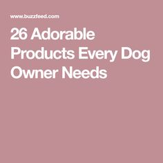 26 Adorable Products Every Dog Owner Needs