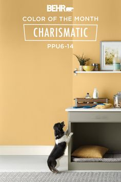 There's nothing like a festive shade of yellow to get you in the holiday spirit. Our Color of the Month, Charismatic, is a deep shade of golden yellow that is reminiscent of fall leaves and is sure to brighten your home all year long. Click below for full color details to learn more.