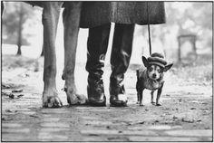 Čtěte na blogu Tomáš Smažák: Oblečky pro psy