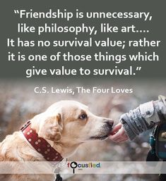 Friendship is unnecessary like philosophy like art. It has no survival value; rather it is one of those things which give value to survival. #Quote #Friendship #FriendshipQuotes http://Focusfied.com