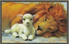 The Lion laying down with the Lamb, prophetic art. Sleeping Lion, Christmas Arts And Crafts, Christmas Cards, Christmas Postcards, Lion And Lamb, 12 Tribes Of Israel, Tribe Of Judah, Prophetic Art, Lion Of Judah