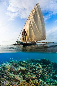 Destination Pemba Island, Zanzibar – Undervattenshotell   Photographer Anhede