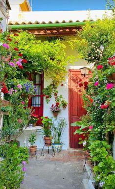 Andalusia, Pergola, Arch, Outdoor Structures, Garden, Cordoba, Longbow, Garten, Outdoor Pergola