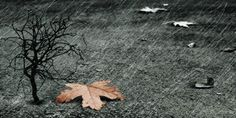 Kαλό...χειμώνα: Αλλάζει απο σήμερα ο καιρός - Βροχές, καταιγίδες, άνεμοι και χαλάζι- Τι προβλέπεται για τη Δυτική Ελλάδα