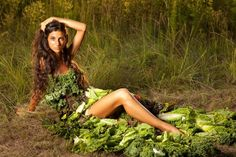 Introducing: The Raw Food Wisdom Files    October 13, 2012 by RawFoodMuse