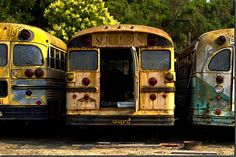 I wonder how much money it costs to buy an old junkyard bus would be