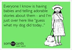 Everyone I know is having babies and telling adorable stories about them - and I'm just over here like 'guess what my dog did today...' funny dog ecards, blah blah blah quotes, cat, crazy dog lady, ecard dog, dogs ecards, funni, puppi, true stories