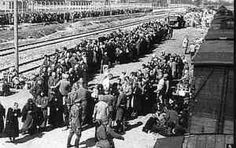A transport of Hungarian Jews arriving at Auschwitz. With the deportations from Hungary, the role of Auschwitz-Birkenau as a key instrument in the German plan to murder the Jews of Europe became paramount. In three months, between late April and early July 1944, approximately 440,000 Hungarian Jews were deported, around 426,000 of them to Auschwitz. The SS sent approximately 320,000 of them directly to the gas chambers
