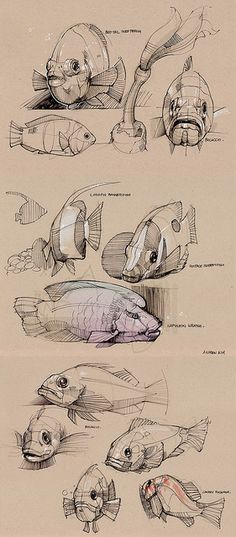 Andrew Kim minimallyminimal Find more at https://www.facebook.com/CharacterDesignReferences if you ar looking for: #art #character #design #model #sheet #illustration #best #concept #animation #drawing #archive #library #reference #anatomy #traditional #draw #development #artist #animal #animals #fish